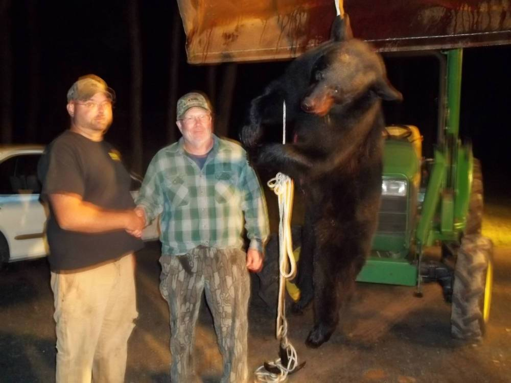 Northern WI Bear Guide