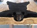 Bear Mount